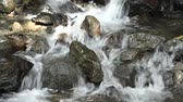 Close up thin brook flowing through among stones in Kagoshima Стоковые видеозаписи