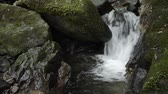 Falling white narrow brook between mossy rocks in Kagoshima