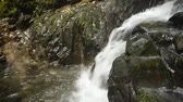 estreito : Falling white narrow fast brook on rock in Kagoshima Stock Footage