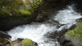 Fast narrow white brook flowing between mossy stones in Kagoshima