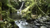 Waterfall falling in back of mossy rock and gentle brook in Kagoshima