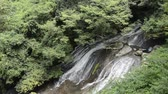 Thin white waterfall falling over rock mass slope between green forest in Kumamoto Стоковые видеозаписи