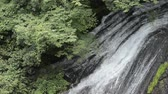 Close up thin white waterfall falling over rock mass slope under green forest in Kumamoto