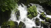 White cascade falling out stones with green plants in Kagoshima Стоковые видеозаписи