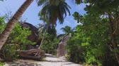Walking Through The Palm Forest And Rocks On The Beach, La Digue, Seychelles