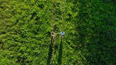 cross the road : Aerial drone footage, young people run across the field Stock Footage
