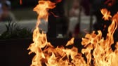 ohnivý : A line of real flames ignite on a black background 100fps, slow motion.