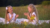 irmãs : children play and laugh running around the field in summer Stock Footage