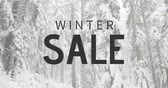 újító : Digitally generated video of winter sale against snowfall 4k