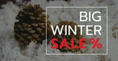 pinha : Digitally generated video of winter sale concept 4k