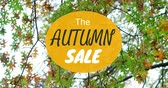 discounts : Digitally generated video of autumn sale concept 4k