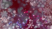 quadro negro : Digital composite of Snowflakes and lights