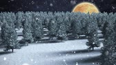 boreal : Digital composite of Winter scenery with full moon and falling snow