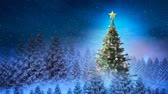 falling stars : Digital composite of Christmas tree in winter scenery and falling snow