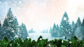 falling stars : Digital composite of Winter scenery and falling snow Stock Footage
