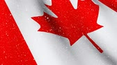 cg graphics : Digital composite of Canadian flag waving with animated snow falling down Stock Footage