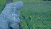 equations : Full view of a botanist spraying plants. Graphs and equations are running in the foreground Stock Footage