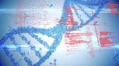 informatico : Digital composite of a DNA helix with a background filled with interface codes