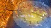 проливая : Digital composite of a tree with leaves about to shed on autumn season with a clock running in the foreground