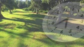 аналог : Digital composite of a park filled with trees with a clock running in the foreground