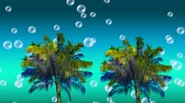 küreler : Digital animation of colorful palm trees moving in the screen while bubbles floats up in the blue gradient background Stok Video