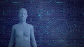 profil : Animation of a 3d representation of a female human orandroid seen from the waits up standing in front of a computer circuitboard with blue glowing light trails move through it