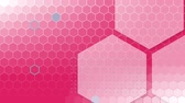 favo de mel : Animation of hexagons and honeycomb shapes appearing with hexagonal mesh on pink background
