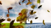 kasım : Animation of colourful leaves falling in autumn and a tree half bare in the background