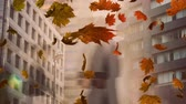 kasım : Animation of colourful leaves falling in autumn with fast moving pedestrians in the background Stok Video