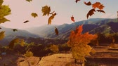 kasım : Animation of colourful leaves falling in autumn in countryside