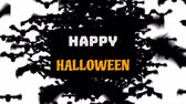 cornici : Animation of the words Happy Halloween in white and orange letters on a black banner with bats flying to camera on a white background Filmati Stock