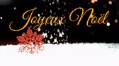 フリッカー : Animation of the words Joyeux Noᅢᆱl written in orange over snow falling in the background