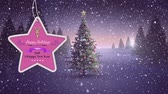 oslava : Animation of the words Happy Holidays 2021 and A Happy New Year written on a pink star shaped label decorated with a reindeer head with a Christmas tree and a countryside scene with falling snow at sunset in the background