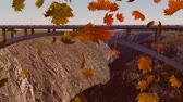 pontes : Animation of colourful leaves falling in autumn in countryside
