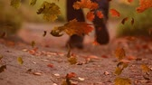 kasım : Animation of colourful leaves falling in autumn in countryside with legs of person walking on a path Stok Video