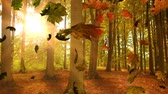 montage : Animation of colourful leaves falling in autumn in a forest