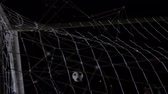 вратарь : Animation of a complex network of connections and data sharing points, with a football going past the hands of a goalkeeper and into a goal against black in the background Стоковые видеозаписи