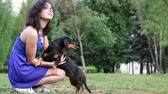 bassê : woman beautiful young happy with long dark hair in blue dress holding small dachshund dog Vídeos