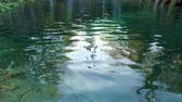 tık : Majestic view on turquoise water and sunny beams in the Plitvice Lakes National Park. Croatia. Europe. Beauty world.