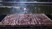 rôti de porc : sausages are grilled on coals in grill for cooking kebabs. Vidéos Libres De Droits