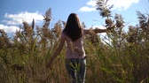 Rear view of young woman or girl in pink t-shirt and blue jeans walking in slow motion through field touching with hand reed or cane Стоковые видеозаписи