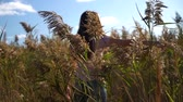 young woman or girl in pink t-shirt and blue jeans spinning in slow motion in field of reed or cane with focus on plants. Стоковые видеозаписи