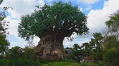 donald duck : Orlando, Florida. May 02, 2019. Panoramic view of Tree of Life at Animal KIngdom.