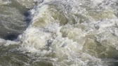 river rapids : Turbulent river flow. timelapse