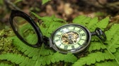 antiguidade : Pocket watch on fern leaves