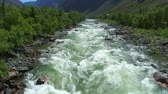 altay : Flight over the Altai mountains. Mountain river