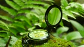 hodin : Pocket watch on green moss