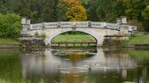 Beautiful bridge in autumn Park Filmati Stock