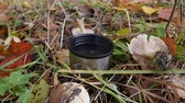 Tea and flask in autumn forest