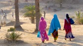 bright clothes : Indian women on rural road